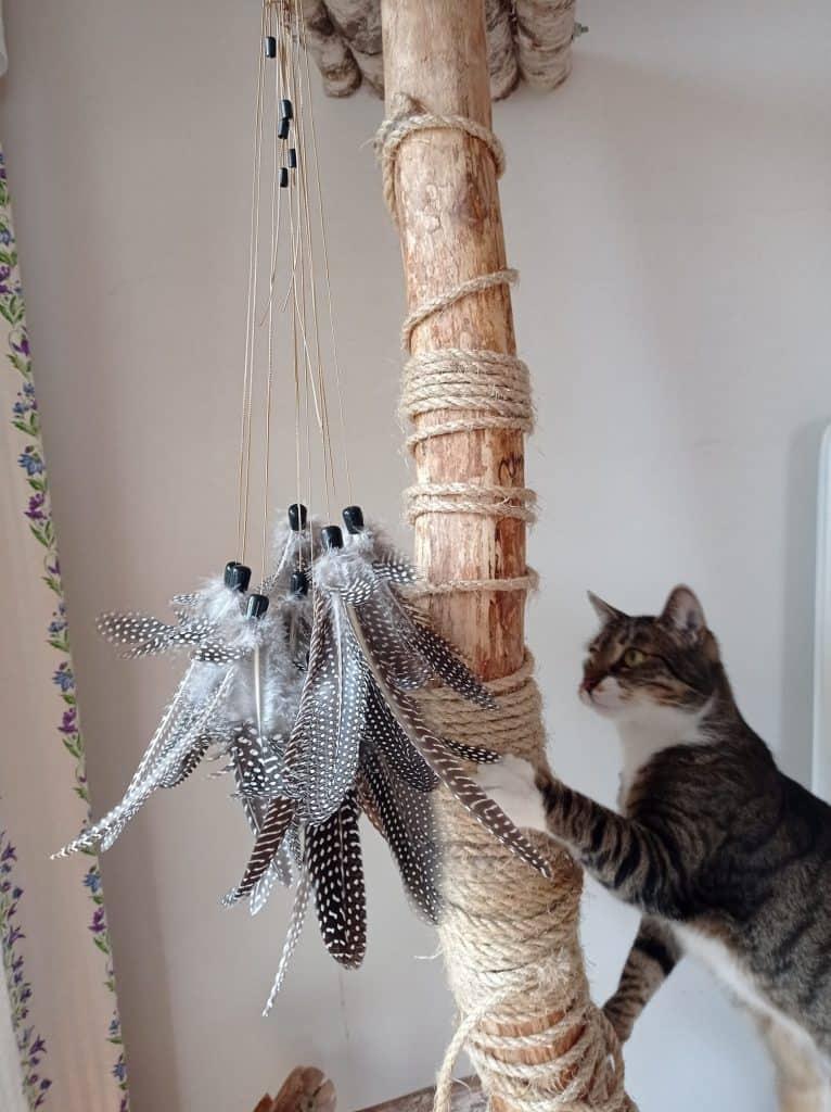 Wędka dla kota standard