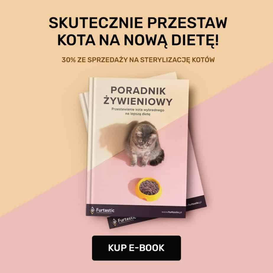 Karma dla kota który nie chce jeść
