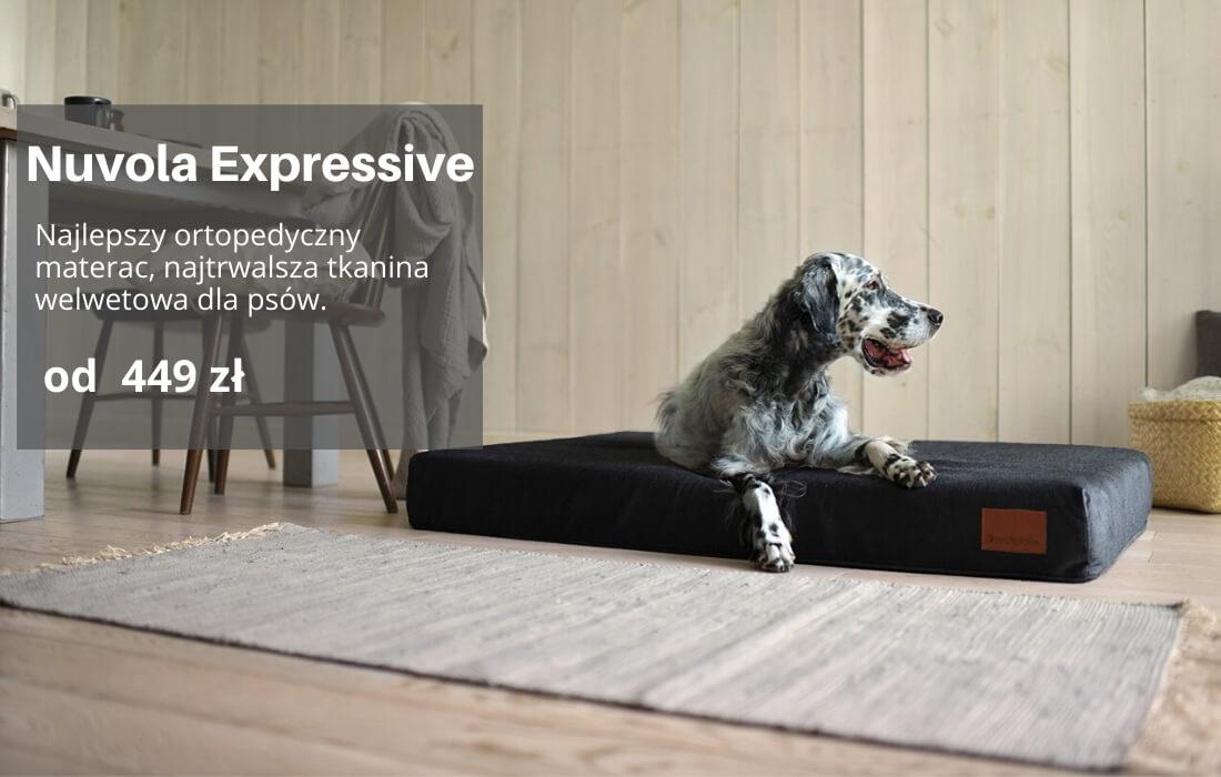 Nuvola posłanie dla psa